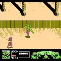 teenage-mutant-ninja-turtles-iii-the-manhattan-project-u-201108232323271