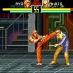Art of Fighting (U)056